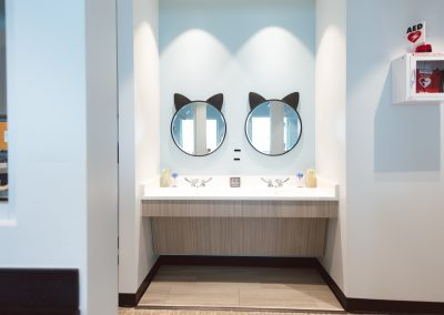 Wang + Cortes Dental Private Spaces